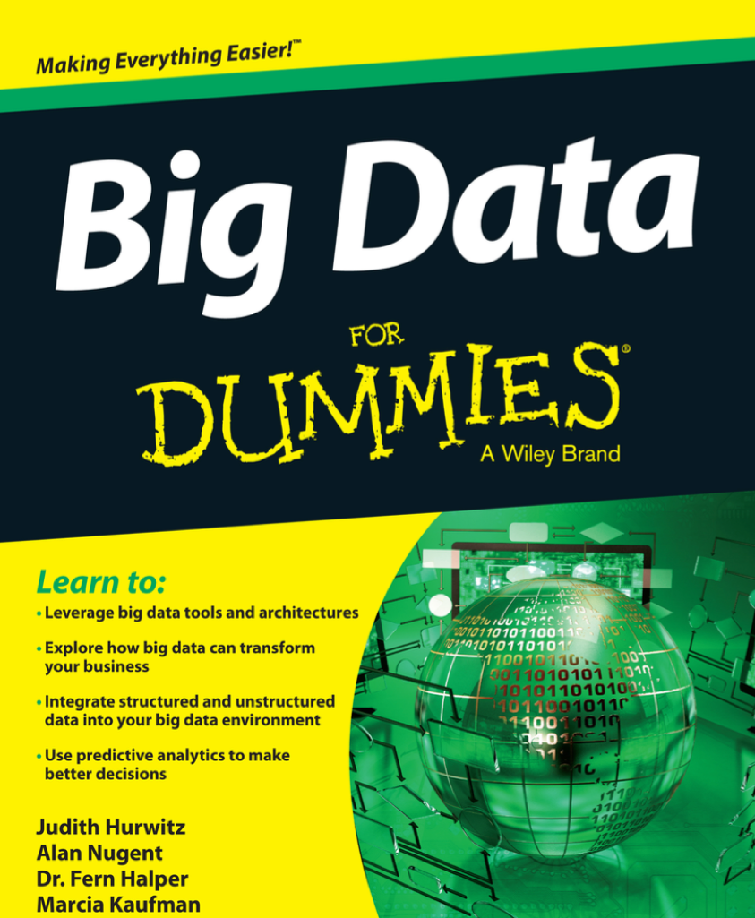 Big Data For Dummies at Social-Media.press